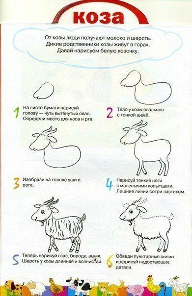 домашние животные пошаговая инструкция